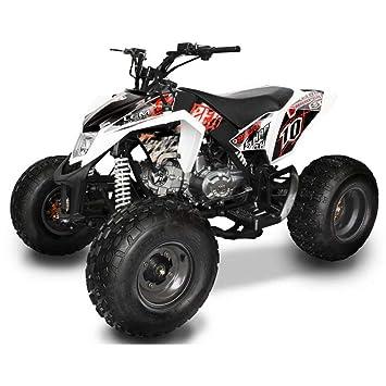 Quad ATV Motor 4 tiempos 125 cc Lem Motor Sharper Rojo: Amazon.es: Coche y moto