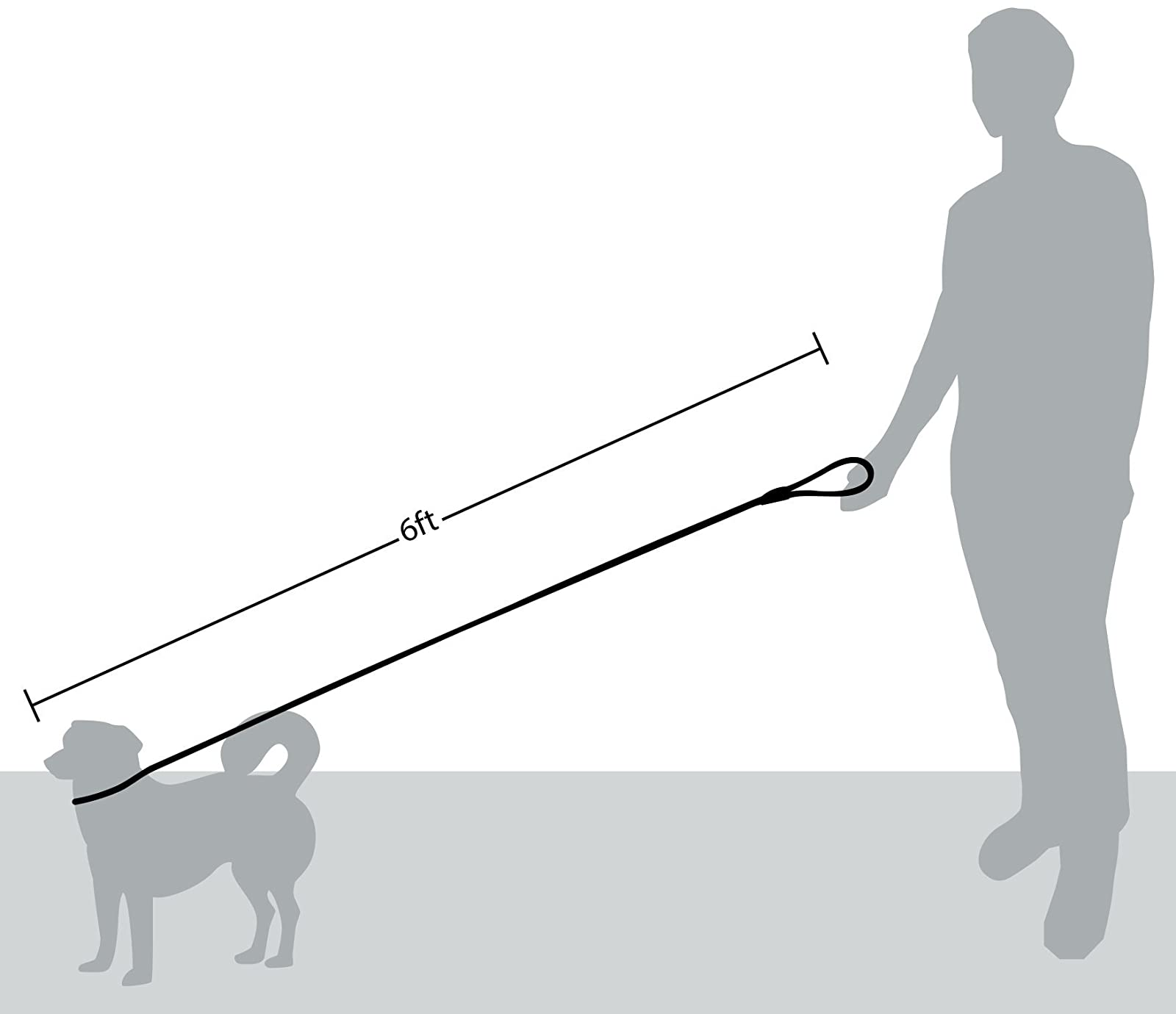 Friends Forever Extremely Durable Dog Rope Leash - 6