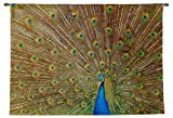 Royal Peacock Woven Wall Tapestry - Includes Free Metal Rod, Available in Three Sizes - Made in the USA (Medium - 53''W x 40''H)