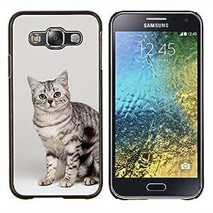 TECHCASE---Cubierta de la caja de protección para la piel dura ** Samsung Galaxy E5 E500 ** --Gato egipcio de Mau Bengala Bobtail