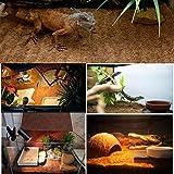 Hamiledyi Reptile Carpet Natural Coconut Fiber