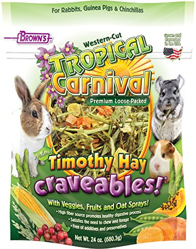 Browns Tropical Carnival Natural (F.M. Brown's Tropical Carnival Natural Timothy Hay Craveables with Veggies, Fruits, and Oat Sprays, Foraging Treat with High Fiber for Healthy Digestion, 24oz)