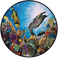 Printing Round Rug,Ocean,Colorful Fishes Hawksbill Floats Under Water Coral Reefs Aquatic Environment Theme Mat Non-Slip Soft Entrance Mat Door Floor Rug Area Rug For Chair Living Room,Multicolor