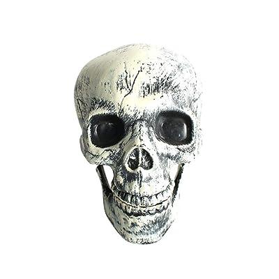 Amosfun Adorno Realista del cráneo Humano de la réplica para la decoración de Halloween de la casa embrujada: Juguetes y juegos