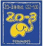 フェルナンデス GSZ 500