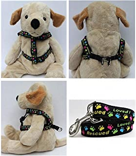 "product image for Diva-Dog 'Rescue Me' Custom 5/8"" Wide Dog Step-in Harness with Plain or Engraved Buckle, Matching Leash Available - Teacup, XS/S"