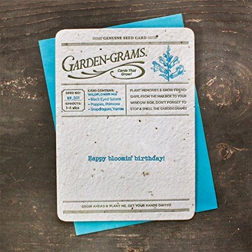 Bloomin Garden Grams Seed Paper Greeting Cards - Wildflower Seed {3 Pack} by Bloomin ()