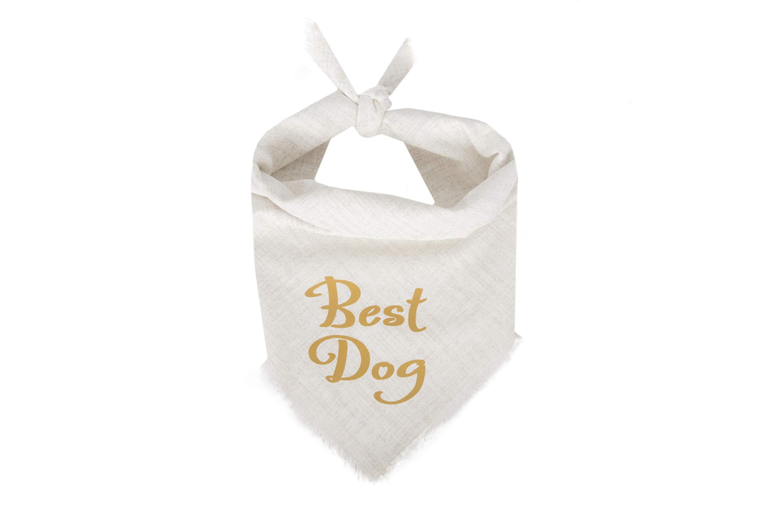Willowear Dog Bandanas Best Dog Gold Large by Willowear