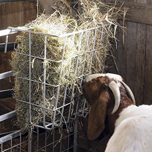 Premier X-Tuff Single Sided Hay Feeder
