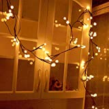 interesting patio backyard design ideas YINGXIANG 8.2Ft Globe String Light,UL Listed String Lights, Hanging Indoor/Outdoor Decorative String Light Garden,Wedding,Xmas Party,Patio, Backyard,Cafe,Party,Bedroom,Tapestry(Warm White)