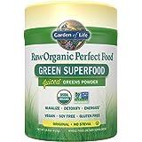 Garden of Life Vegan Green Superfood Powder - Raw Organic Perfect Whole Food Dietary Supplement, Original, 14.8oz (419g) Powder