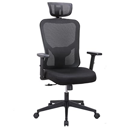 Cedric Ergonomic Mesh Office Chair High Back Desk With Adjustable Lumbar Support PU