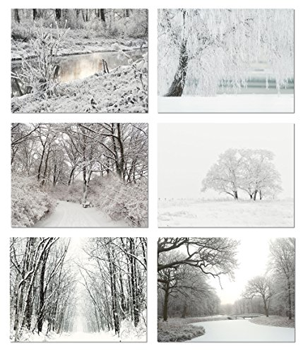 Winter Scenes Blank Note Cards - Greeting Cards with Envelopes - 6 Unique Designs - 5.5