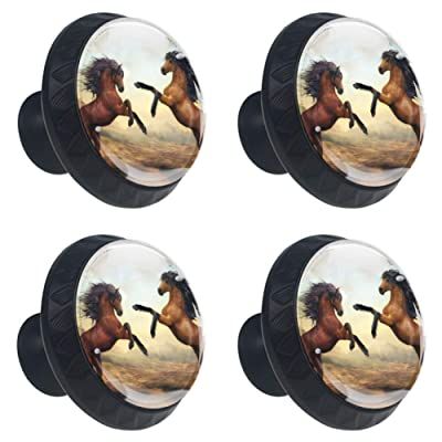 4 Pcs Wild Horses Cabinet Knobs Round Glass Drawer Handles Pulls for Kitchen Furniture Hardware Cupboard Dresser Bookcase with Screws-1-3/8 Inch(35mm) Diameter: Home & Kitchen