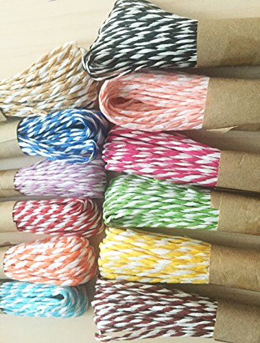 Carykon 12 Colors Double Color Raffia Stripes Paper String For DIY Making Gift Wrapping Deco, 10 Yards of Each Color (Double Color), Colors May Vary