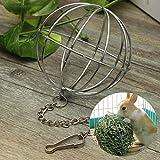 Sphere Guinea Pig Hamster Rat Rabbit Feed Dispenser Hanging Iron Ball Toy 8.4cm by Hong Kong
