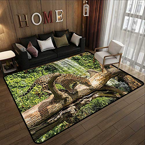All Weather mats,Safari Decor Collection,Jaguar Cat on a Tree Trunk Waterfall Endangered Species Wild Life Fast Animal Image,Green Peru T 78.7