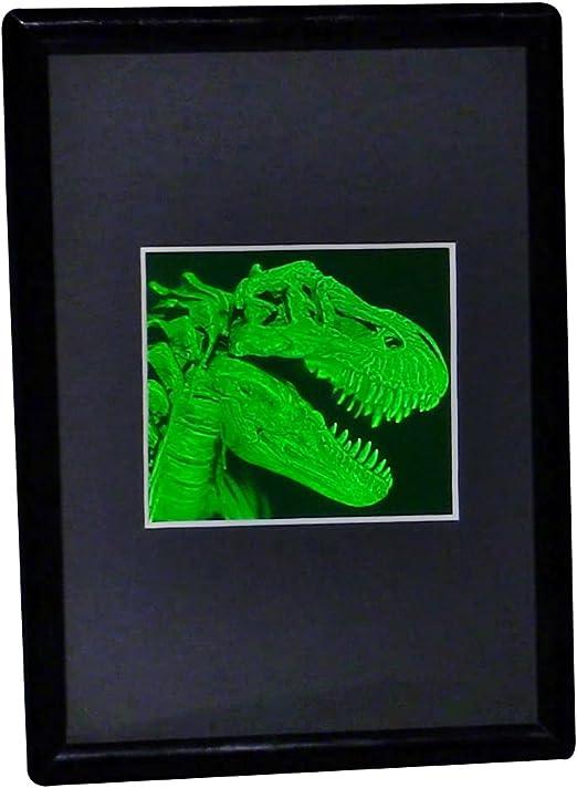 Cabeza De Animal Geometrico T Rex Dinosaurio Pared Arte Moderno Diseno Contemporaneo Una galería de imágenes de dinosaurios para apreciar la grandeza de estos animales prehistóricos. t rex dinosaurio pared arte moderno