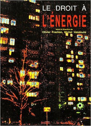 En ligne Le Droit à l'énergie pdf, epub ebook