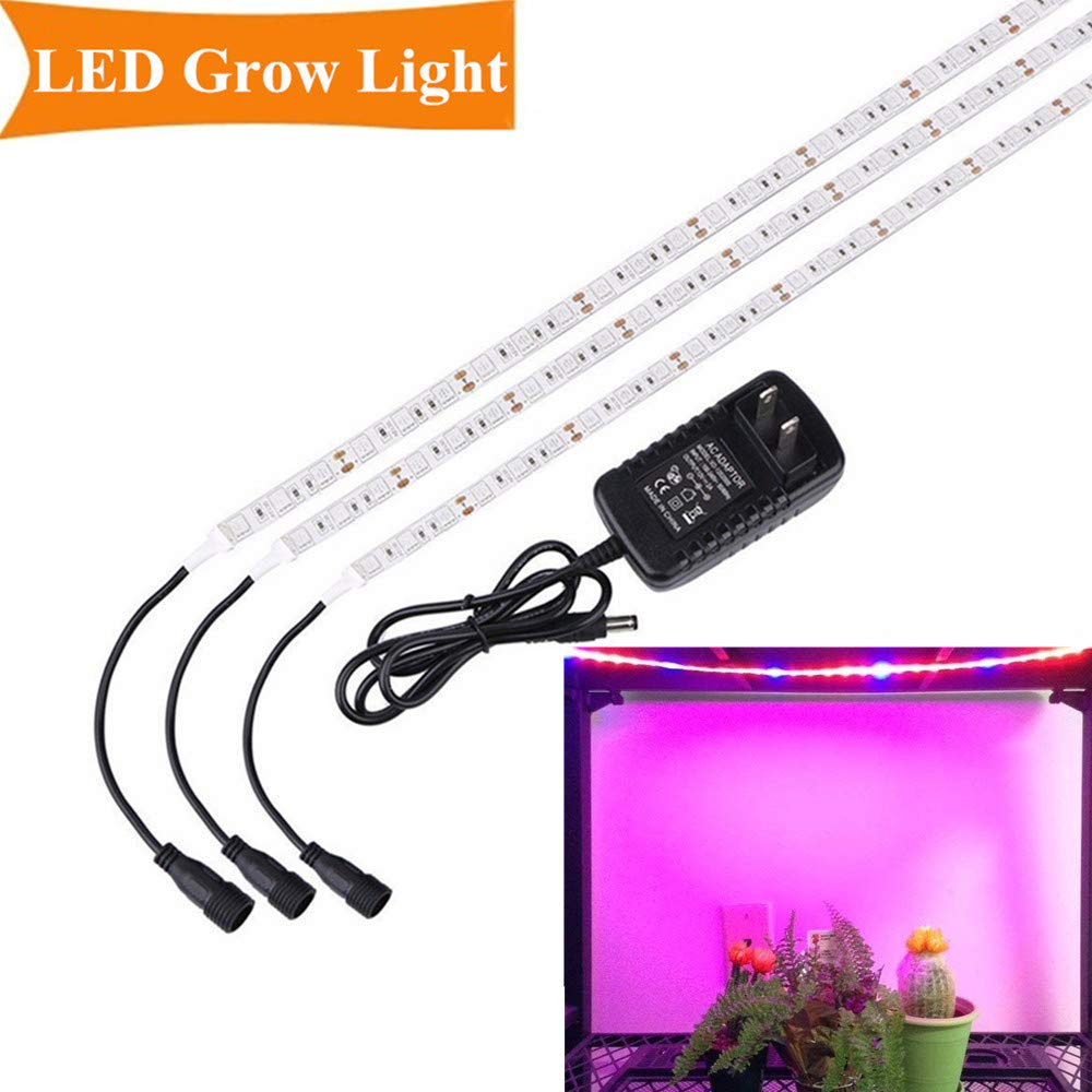 Ultraviolet lamps for plants: types, features of choice