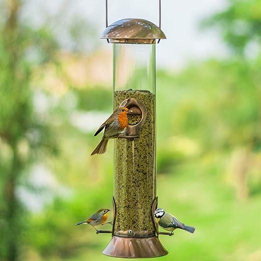 PL Comedero para Pájaros - Dispensador De Comida para Aves - Alimentador Tubo Decorativo con Colgador para Su Jardín: Amazon.es: Hogar