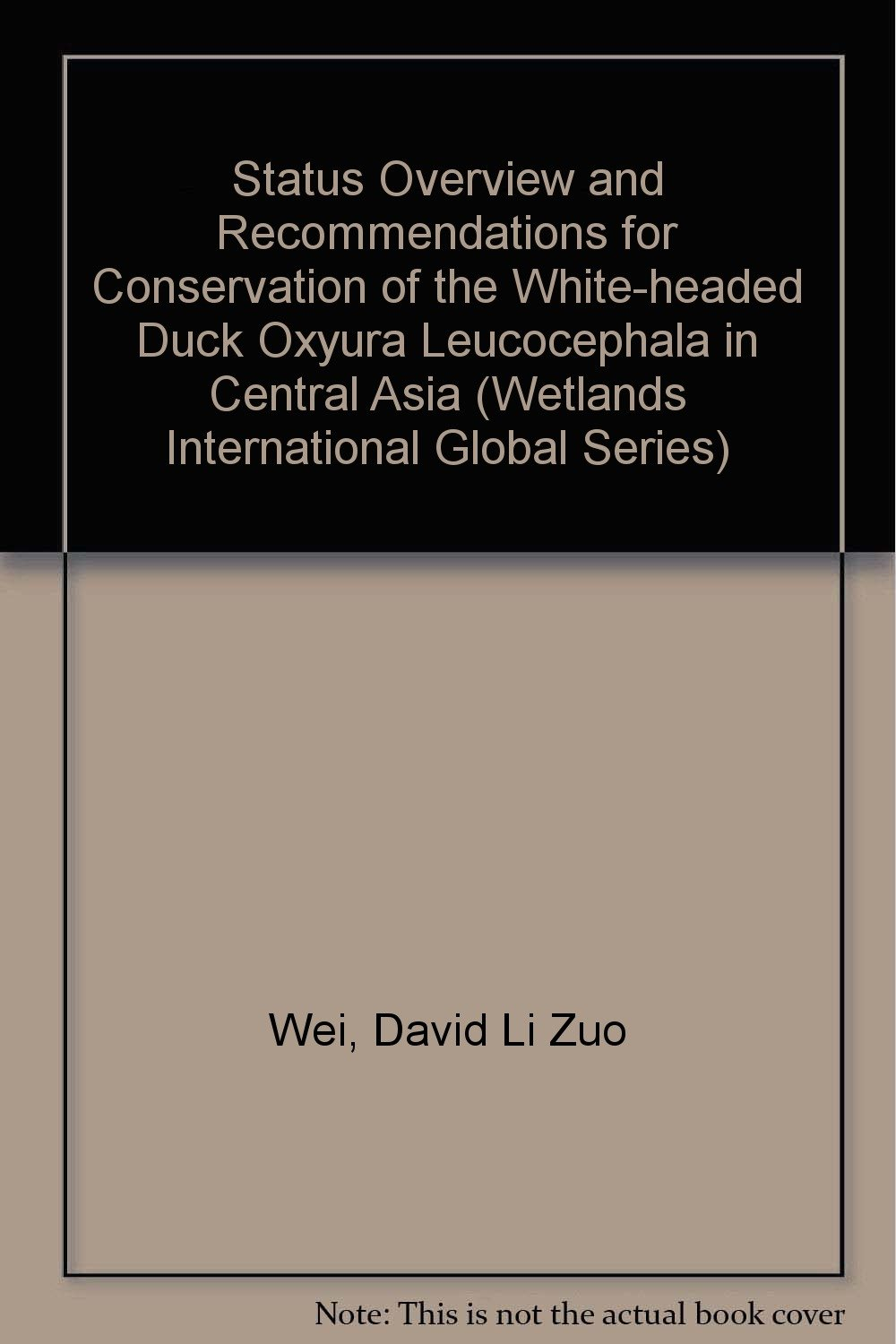 Read Online Status Overview and Recommendations for Conservation of the White-headed Duck Oxyura leucocephala in Central Asia (Wetlands International Global Series) pdf epub