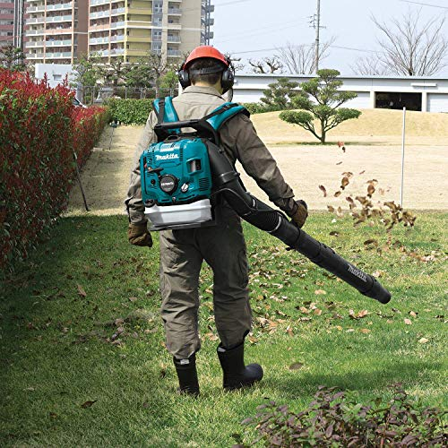 Man using leaf blower in park