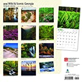 Georgia, Wild & Scenic 2018 12 x 12 Inch Monthly Square Wall Calendar, USA United States of America Southeast State Nature