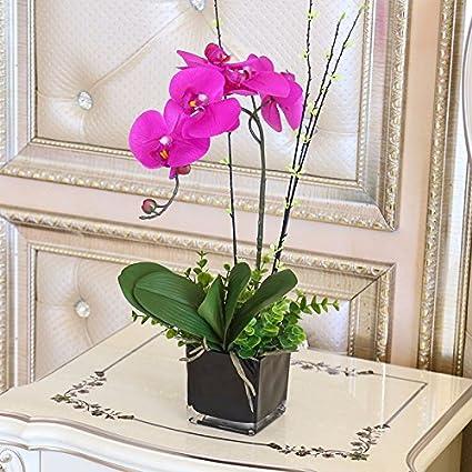 Xphopoq Flor Artificial La Orquídea Los Jarrones De Cristal
