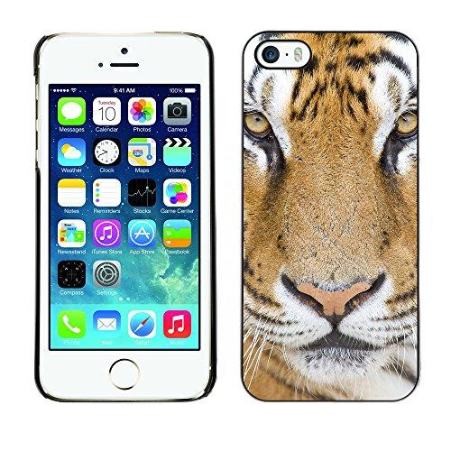 Premio Sottile Slim Cassa Custodia Case Cover Shell // V00002169 tigre // Apple iPhone 5 5S 5G
