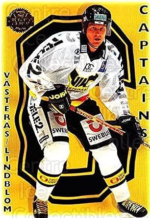Vik Vasteras Hk