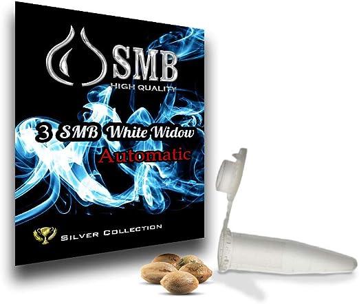 Pack 3 Semillas white widow Silver Collection + auto + SEMILLA DE REGALO.: Amazon.es: Jardín