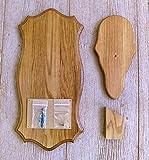 The Taxidermists Woodshop Medium Oak European Mount Picture Pedestal Plaque