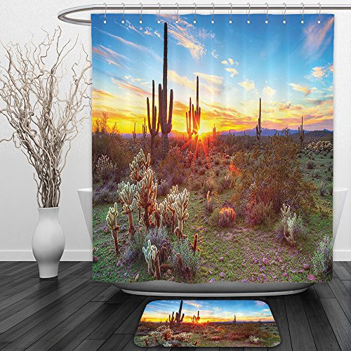 Vipsung Shower Curtain And Ground MatSaguaro Cactus Decor Collection Saguaros Wildflowers in Sonoran Desert Scene Picture Print Blue Yellow Orange OliveShower Curtain Set with Bath Mats Rugs