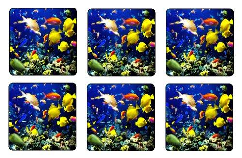 Tropical Fish Coaster Set of 6 Sea Mini Mousepads