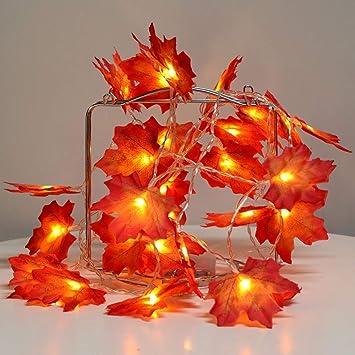 Amazon.com: Guirnalda decorativa de luces, diseño ...