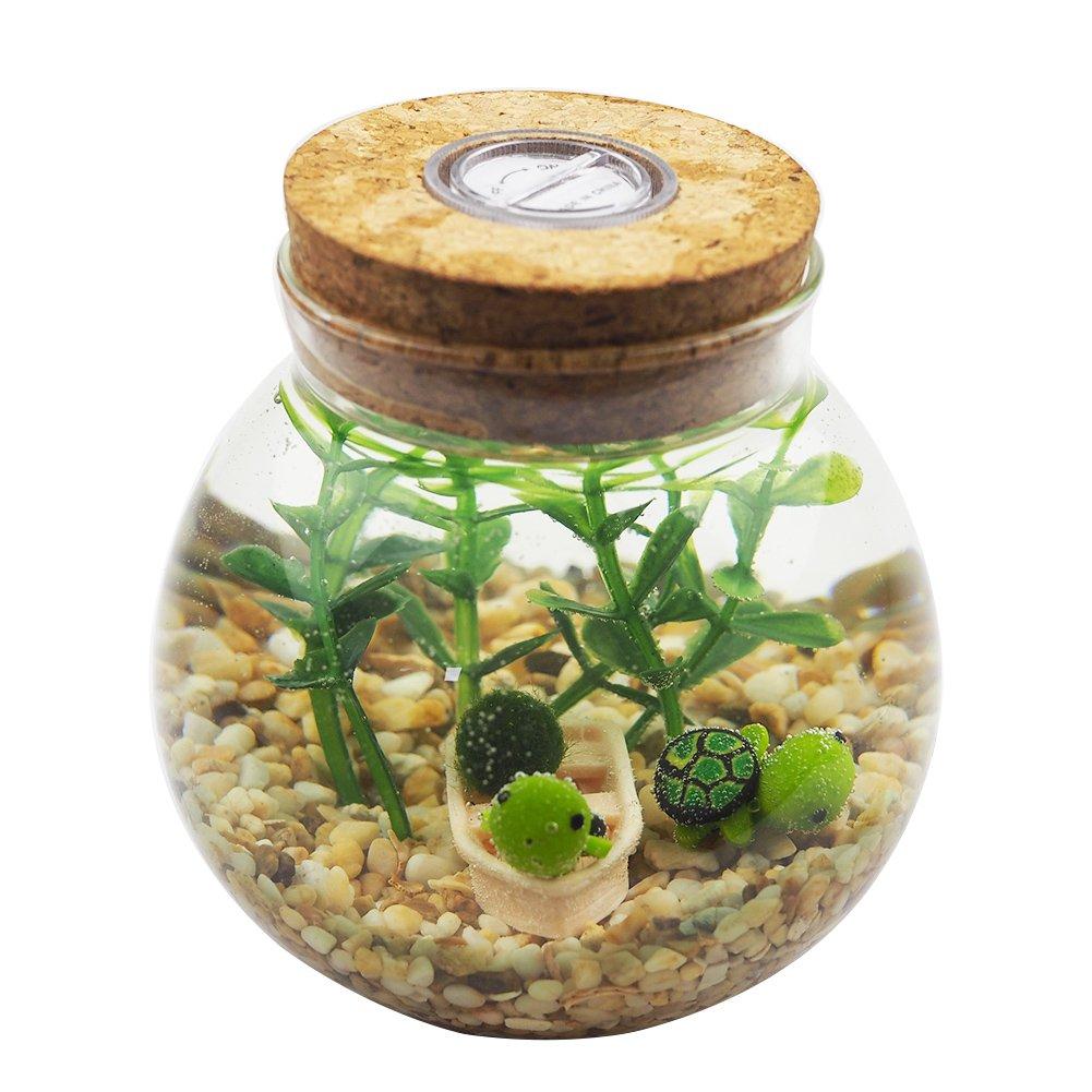 OMEM Juego de Acuario - Bolas de musgo estilo de vida, algas marinas, grava, muñeca, banco de trabajo de barco decoración regalo de San Valentín (1 año de ...