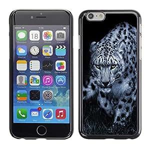 TECHCASE**Cubierta de la caja de protección la piel dura para el ** Apple iPhone 6 ** Leopard Black White Animal Nature Hint
