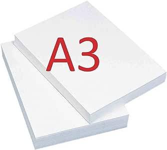 Profi Business 5.000 folios - Pack económico, 2 cajas con 2.500 ...