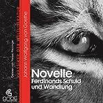 Novelle (ohne Titel) / Ferdinands Schuld und Wandlung | Johann Wolfgang von Goethe