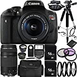 Canon EOS Rebel T6i DSLR Camera Bundle with 18-55mm f/3.5-5.6 IS STM Lens & EF 75-300mm f/4-5.6 III Lens, Carrying Case and Accessory Kit (22 Items)