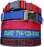 Mix Paws TM - REFLECTIVE Customized Personalized Embroidered Dog Name Adjustable Nylon Safety Collar for Medium to Large Dogs