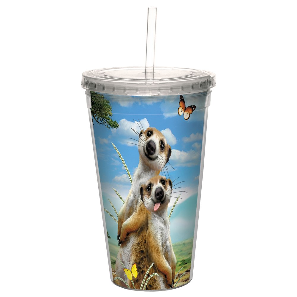 Tree-Free Greetings CC98912 Cool Cups, Double-Walled Pba Free with Straw and Lid Travel Insulated Tumbler, 16 Ounces, Meercat Selfie