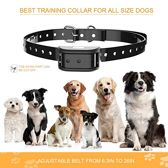 Dog Training Collar - Rechargeable IPX7 Waterproof Training Collar for Dogs  with 3 Training Modes (Beep, Vibration and Shock), Up to 350 Yards Remote