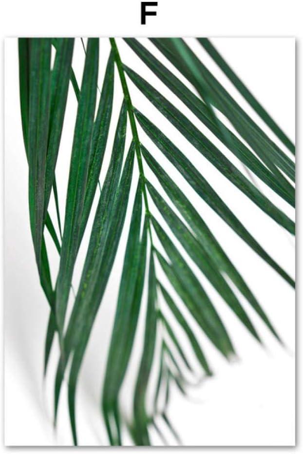 LiMengQi Cactus Verde Fresco Grandes Hojas Tropicales Pared Arte Lienzo Pintura Plantas Carteles nórdicos e Impresiones Cuadros de Pared para Sala de Estar (No Frame): Amazon.es: Hogar