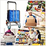 Hereinway Foldable Jumbo Shopping Cart