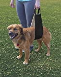 All Seasons Dog Lift Harness for Post-Op Surgery of Weak Hind Legs