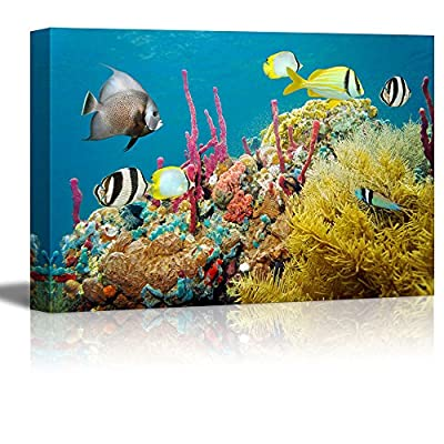 Charming Print, Colored Underwater Marine Life in a Coral Reef with Tropical Fish Caribbean Sea Wall Decor, Premium Creation