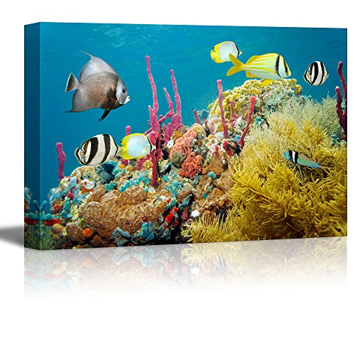 (wall26 - Canvas Prints Wall Art - Colored Underwater Marine Life in a Coral Reef with Tropical Fish, Caribbean Sea | Modern Wall Decor - 24