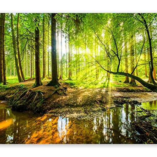 - artgeist Photo Wallpaper Forest 116